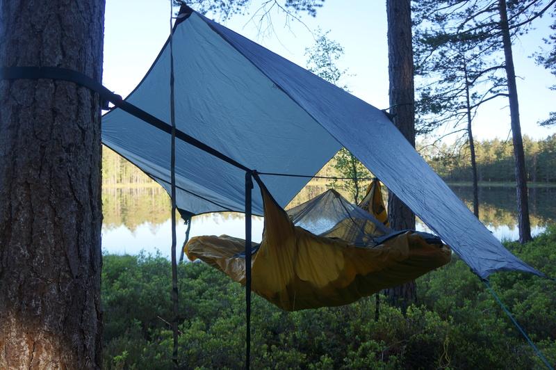Första bild av Skogsövernattning i hammock