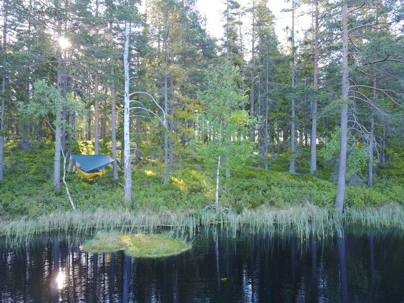 bild 3 av Skogsövernattning i hammock