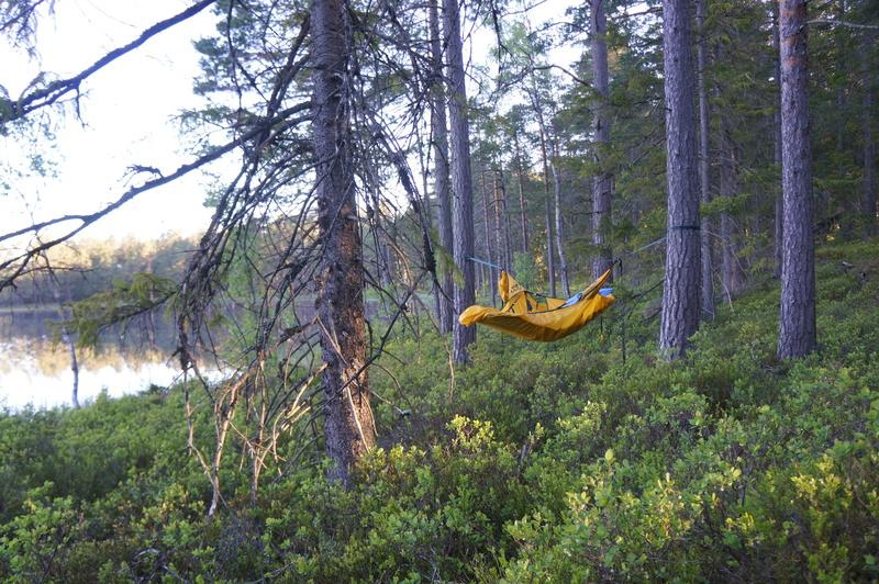 bild 4 av Skogsövernattning i hammock