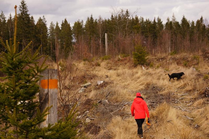 bild 5 av biking/hiking