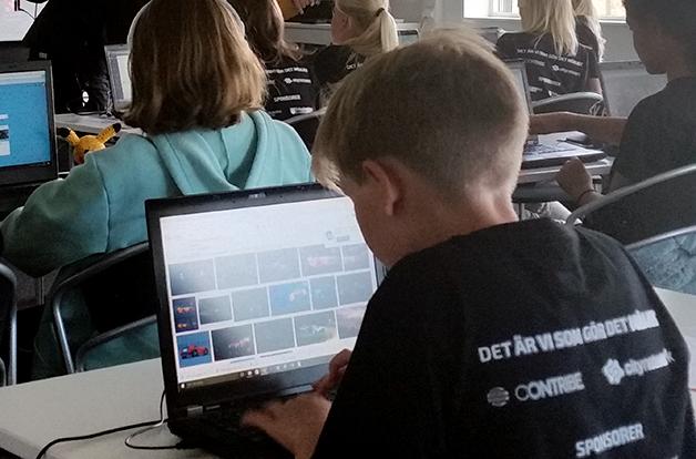 Internet camp med skärmfria kvällar preview bild