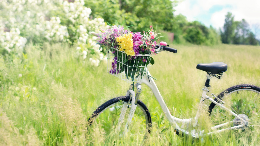 Tävling för hållbart resande