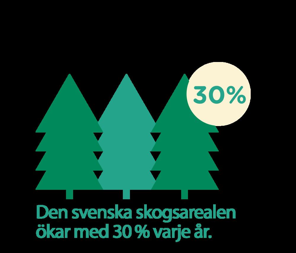 Den svenska skogsarealen ökar med 30 % varje år.