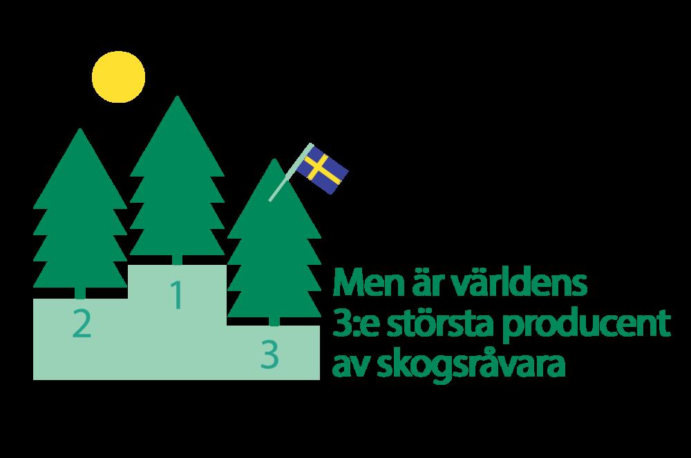 Sverige är världen tredje största producent av skogsråvaror.
