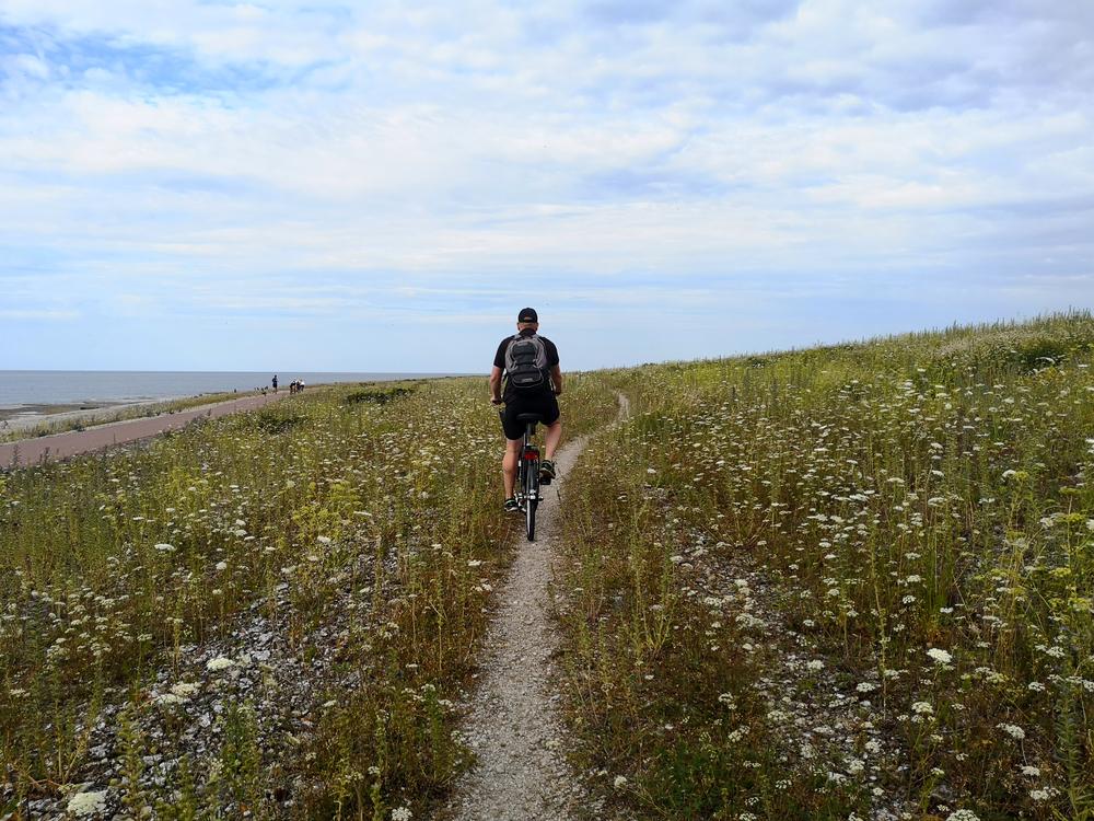 Upptäck Norra Öland på cykel.