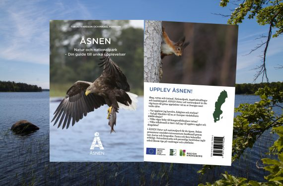 ÅSNEN Nature, National Park and Wildlife in South Sweden – a Travel Guide