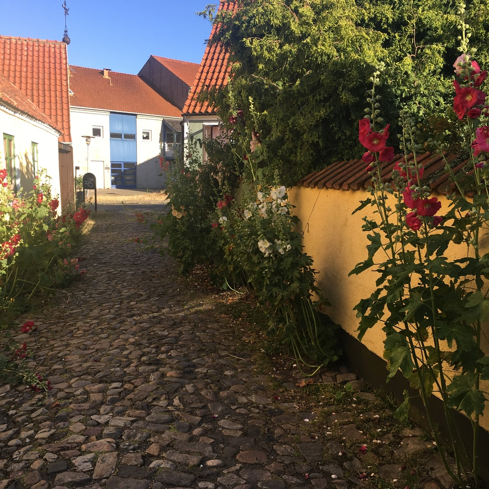 Flower street in Simrishamn