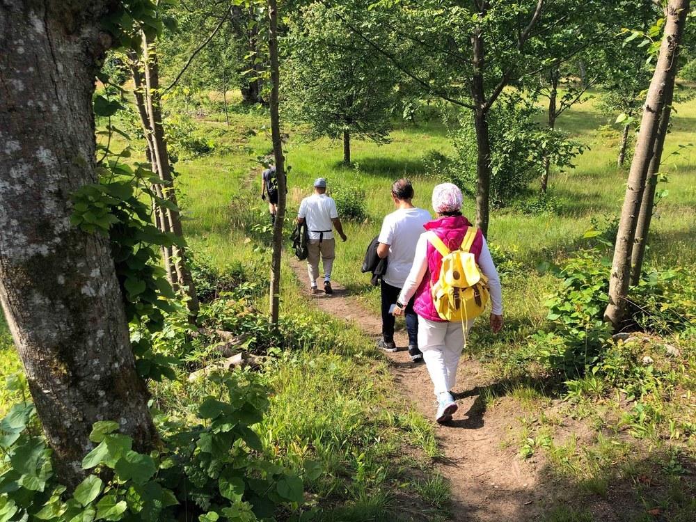 Besök Vakö Myr naturreservat med vår guidade cykeltur.