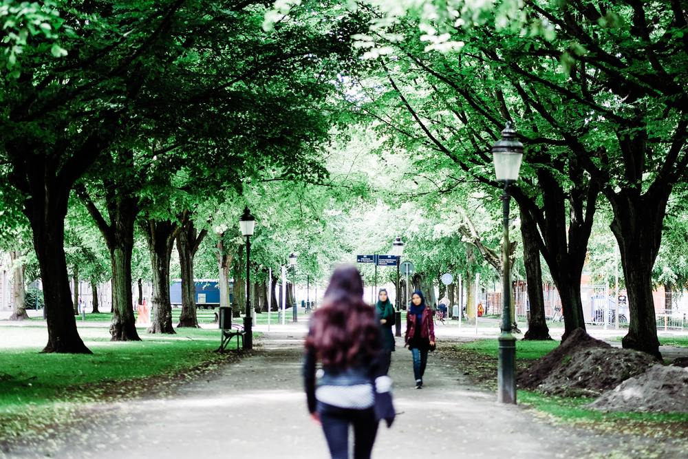 Many parks in Malmö