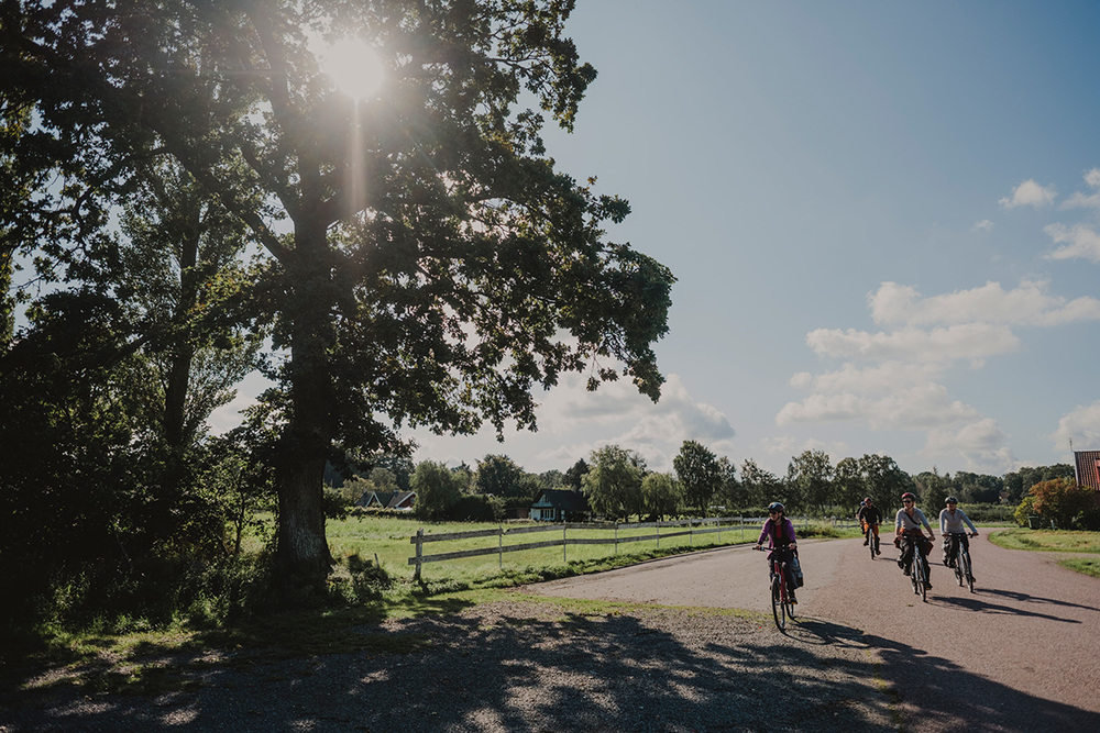 Cykling på Sydostleden