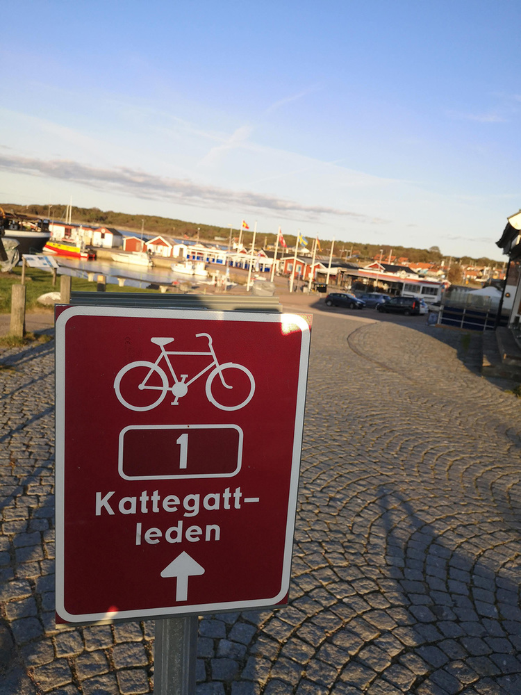 Rent a bike and cycle Kattegattleden.