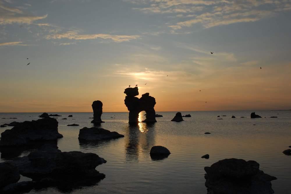 Famous rauks in Gotland.