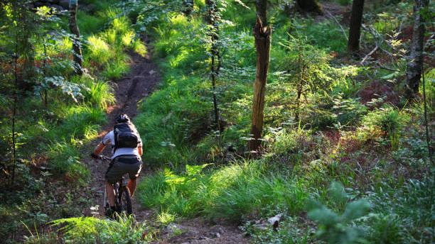 Mountainbike cykling i Svartbäcksmåla.