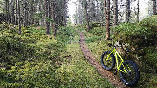 Cykla mountainbike i Askersund, hyr mountainbike eller el-mountainbike.