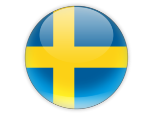 Swedish language icon