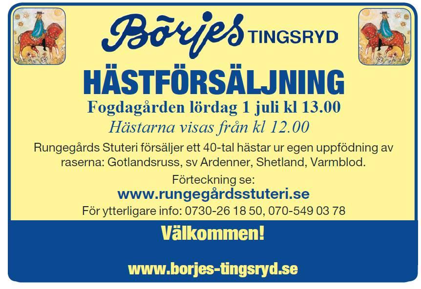 Hästförsäljning på Fogdagården 1/7 preview image