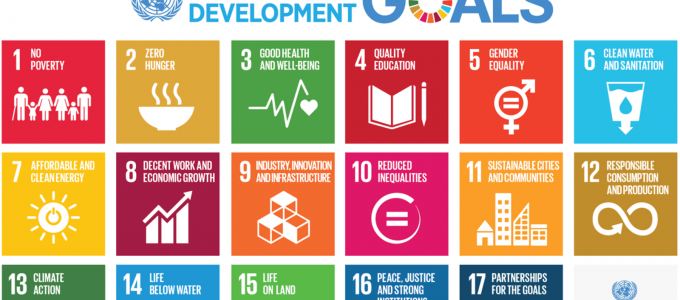 Are Businesses Really Committed to the SDGs?