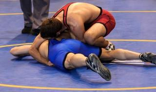 Wrestling Men's Greco-Roman & Women's Freestyle Semifinals 01/08 TOWRE02 - 2020 Games in Tokyo