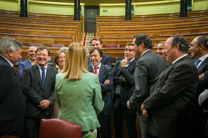 feda-congreso-diputados-antonio-garamendi