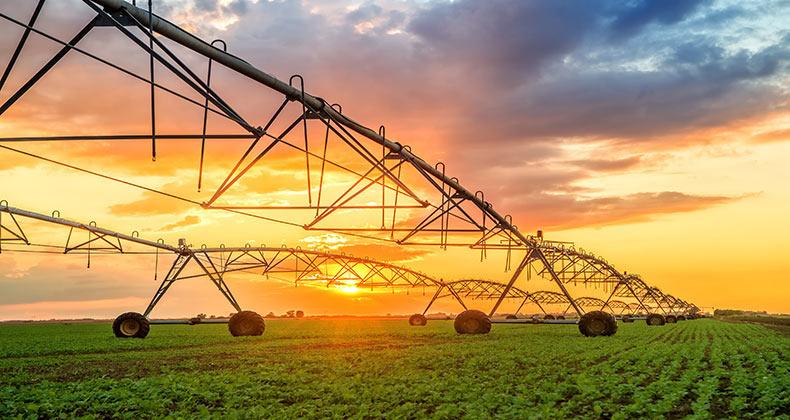 la-agricultura-sector-estrategico-busca-equilibrio-la-sostenibilidad-medioambiental-economica
