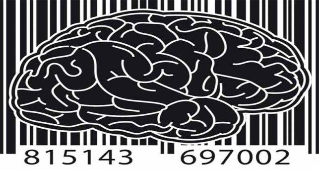 neuromarketing-tecnicas-de-promocion-que-convencen-al-cerebro