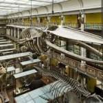 National Museum Natural