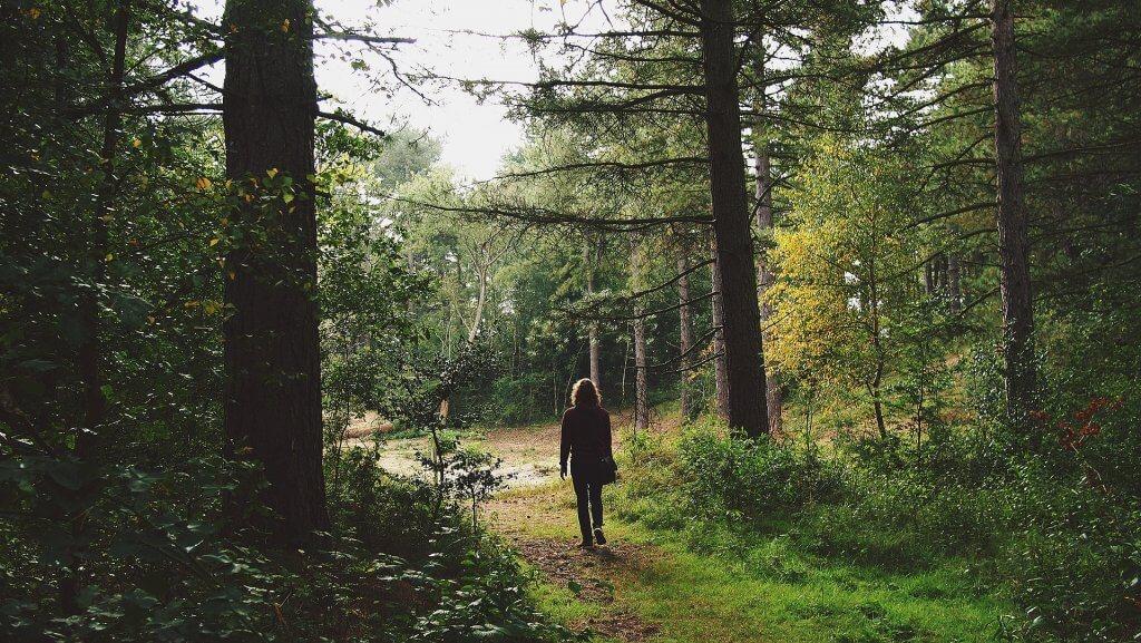 Procházka v přírodě