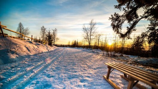 winter-1391617_1920