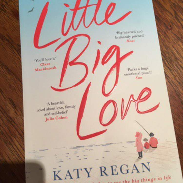 Little Big Love by Katy Regan