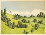 Folke Lind: Pilgrimsfalk