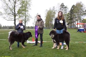 62_vinnarna-barn-med-hund