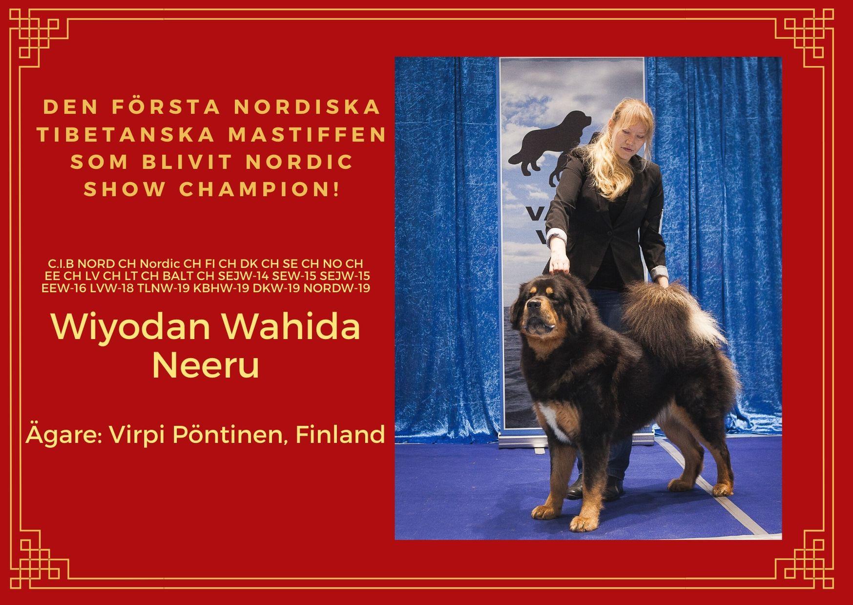 nordic show champion