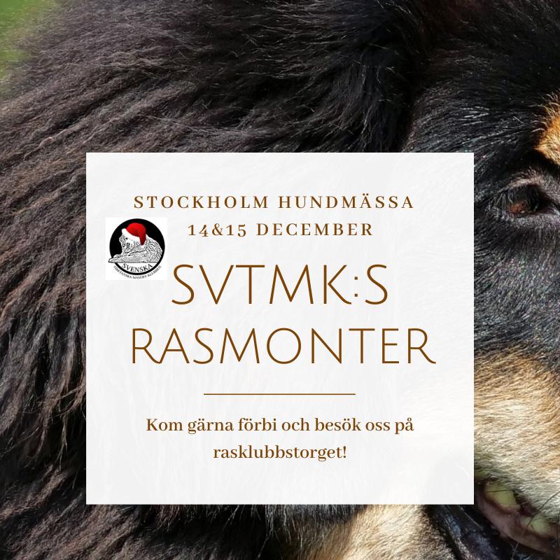 stockholm hundmässa