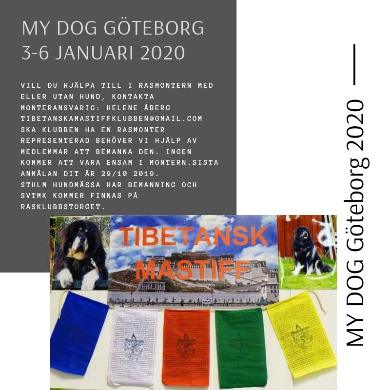 MY DOG Göteborg 2020