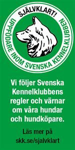 SKK_banner