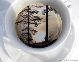 Kaffe i soluppg__ng