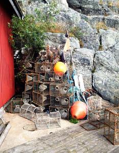 Fisknät i Skärhamn
