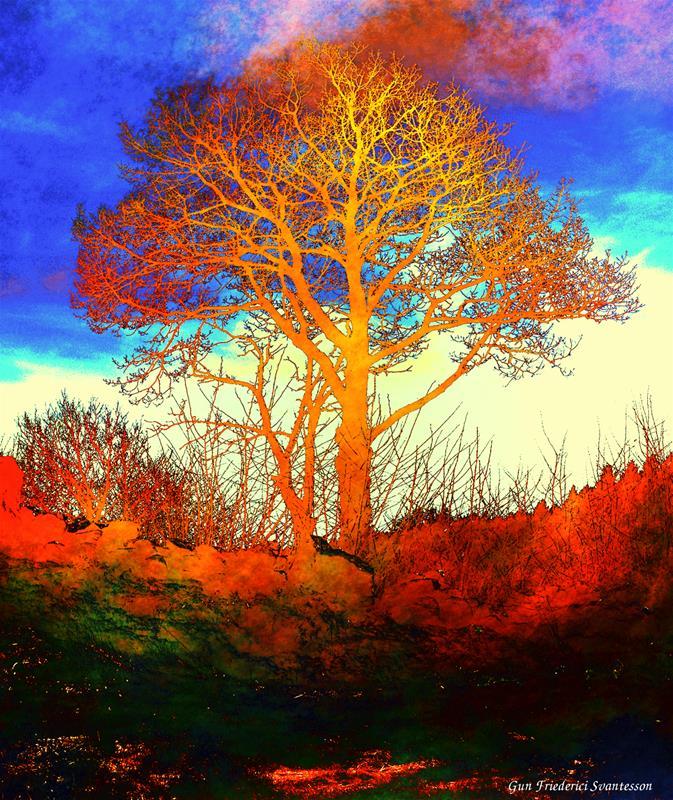 Det gyllene trädet