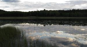 Skogsjö i Bohuslän