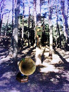 Nostalgi i skogen