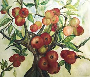 Äpplen i Österlen