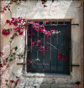 Fönster i chania