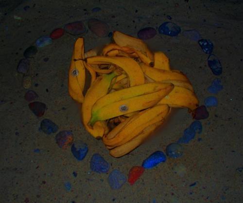 Efter bananfesten