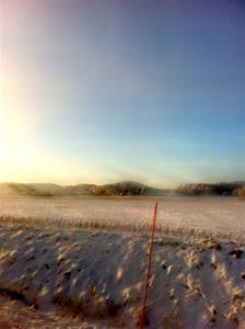Vinterbild på hemvägen