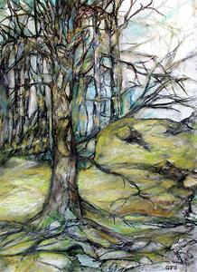 Vårskogen 17