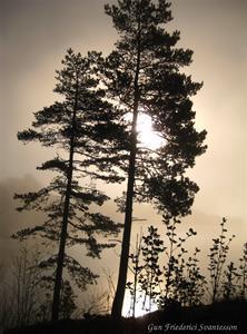 xs Soluppgång III