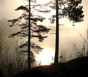 soluppgång 1