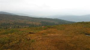 Vestfjorddalens Spiv