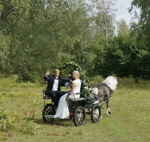 Ask drar bröllop