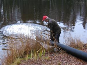 fiskutsättning lilldigerl. 2014-1020 150